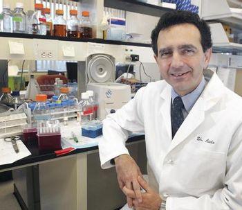 Cultivan penes de laboratorio para implantarlos en humanos