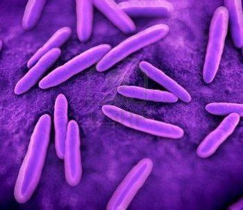 Descubren que una bacteria de la piel humana podría ser la causante de la rosácea