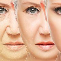 Los 6 tratamientos médico estéticos según la estación