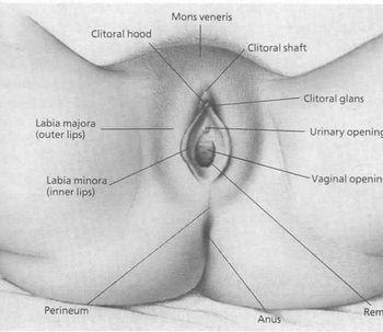tratamiento medico del VAGINISMO