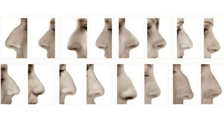 ¿Tienes una nariz que no termina de encajar en tu rostro?