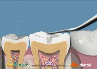 zen dental