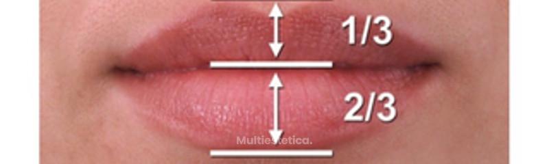 Proporción de los labios
