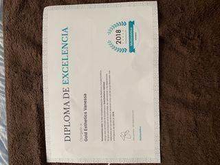 Diploma de excelencia profesional