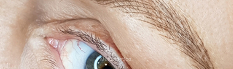 Micropigmentación cejas técnica pelo a pelo