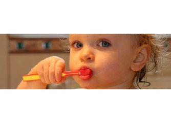 b&g especialitats odontologiques