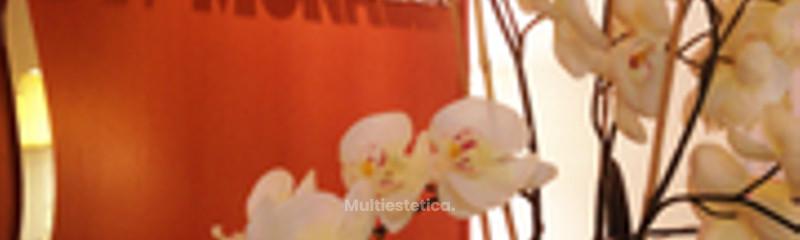 Orquídeas y luces