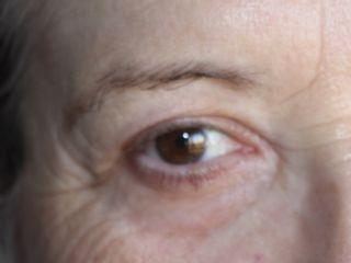 Micropigmentación de cejas canosas efecto