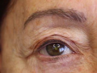 Al mes de la micropigmentación de cejas pelo a pelo