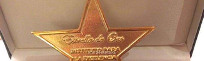 ICA, GALARDONADA CON LA ESTRELLA DE ORO A LA EXCELENCIA PROFESIONAL.jpg
