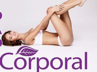 tratamiento corporal : celulitis, estrias, grasa localizada