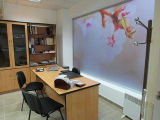 Centro Clinico San Roque