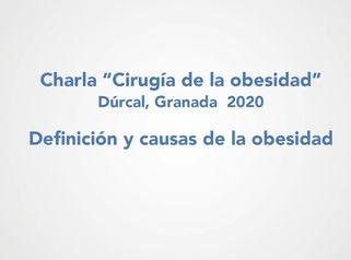 Definición y causas de la obesidad